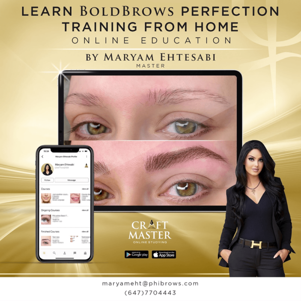 perfection bold brows